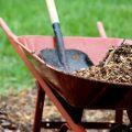 7 ý tưởng tuyệt vời để sử dụng vỏ trứng trong vườn