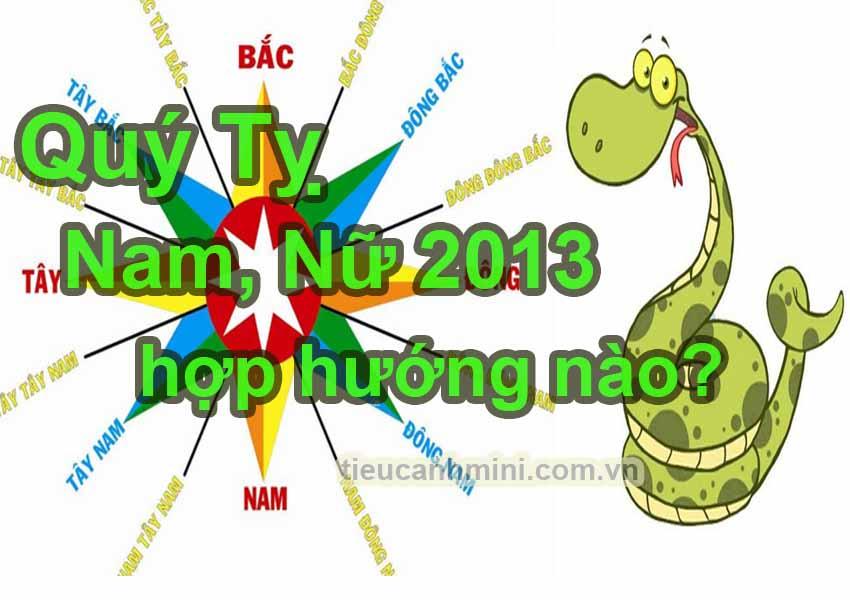 Tuổi Quý Tỵ Nam, Nữ 2013 hợp hướng nào?